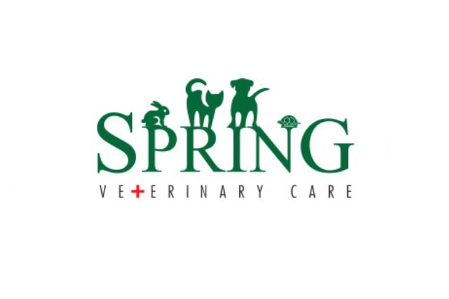 Spring Veterinary Care