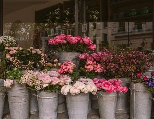 Best Flower Shops Outram